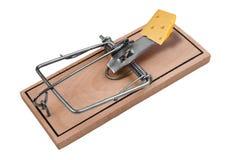 Mousetrap mit Käse Lizenzfreie Stockfotos