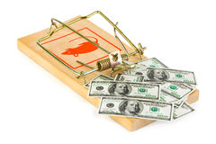 Mousetrap and money Royalty Free Stock Images