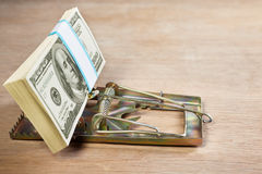 Mousetrap with money bait Royalty Free Stock Photo