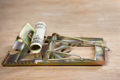 Mousetrap with money bait Stock Image
