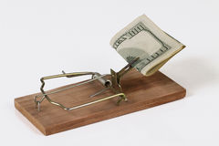 Mousetrap with money Stock Photography