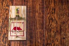Mousetrap na twarde drzewo podłoga Fotografia Royalty Free