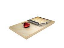 Mousetrap och hjärta Royaltyfria Foton