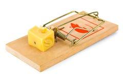 Mousetrap och ost Royaltyfri Bild