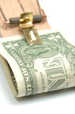 Mousetrap with one dollar Royalty Free Stock Photography