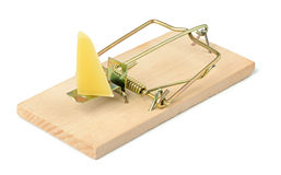 Mousetrap with a piece of cheese Royalty Free Stock Image