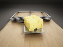 Mousetrap Stock Photos