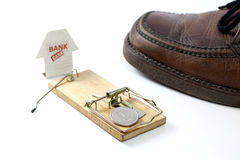 Mousetrap set by the bank Royalty Free Stock Photo