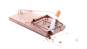 Mousetrap with smashed cigarette Stock Images
