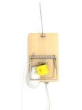 Mousetrap sulla porta di lan Fotografia Stock Libera da Diritti