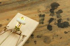 Mousetrap z sirynge nałogu leka ostrości strzykawka Leka oklepiec Zdjęcia Royalty Free