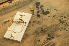 Mousetrap z sirynge nałogu leka ostrości strzykawka Leka oklepiec Fotografia Stock
