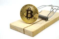 Mousetrap z złocistym bitcoin Obraz Royalty Free