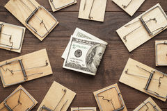 Mousetraps business concept. Many mousetraps surrounding one hundred dollar bill. business concept Stock Photos