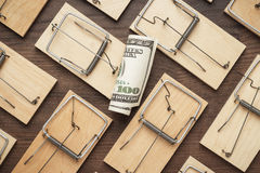 Mousetraps business concept. Many mousetraps surrounding one hundred dollar bill. business concept Stock Image