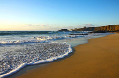 mousse atlantique de plage Image libre de droits