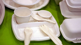 Mousse biodégradable Photos stock