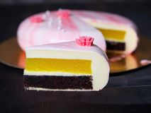Mousse cake. Chocolate biscuit, pineapple confit and white chocolate mousse Royalty Free Stock Photo