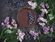 Mousse cake with chocolate, yogurt and blueberries on a dark background with lilac, Confectionery, Pastry. Confectionery, Mousse cake with blueberries on a dark royalty free stock photography
