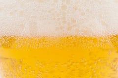 Mousse de bière Photographie stock libre de droits