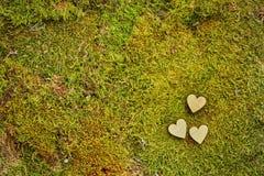 Mousse de forêt avec les coeurs en bois Photographie stock
