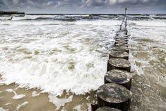 Mousse de l'eau de mer Photos libres de droits