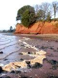 Mousse de plage Image libre de droits