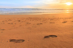 Mousse de vague passant la plage Images libres de droits