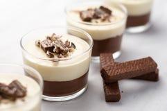 Mousse di cioccolato della torta di formaggio immagine stock