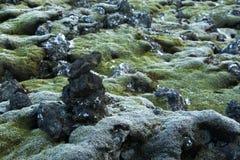 Mousse durable sur les roches volcaniques en Islande photographie stock libre de droits