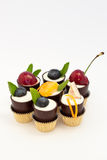 Mousse em uns copos da sobremesa do chocolate imagem de stock royalty free
