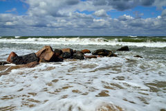 Mousse et brise-lames de mer Photographie stock libre de droits