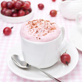 Mousse Of Red Gooseberry And Whipped Cream Stock Photography