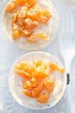 Mousse saumonée avec les morceaux saumonés photos stock