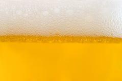 Mousse sur la bière blonde Photographie stock