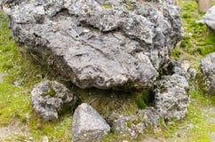 Mousse sur la pierre en automne Images libres de droits