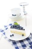Moussecake med nya blåbär Royaltyfria Bilder
