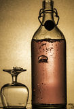 Mousserande alkohol Royaltyfria Foton