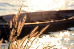 Mousserande ljus från floden Royaltyfri Bild