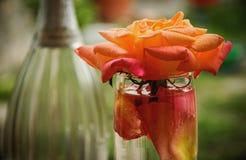Mousserande vin med rosor royaltyfria bilder