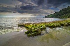 Mousses de roche à la plage de Lombok, Indonésie Photographie stock libre de droits