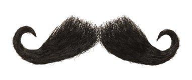 moustache photo stock