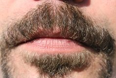 Moustache closeup. Male moustache mouth skin sunshine closeup Royalty Free Stock Image