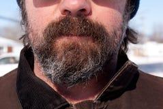 Moustache glaciale images libres de droits