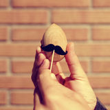 Moustached wooden egg, with a filter effect. The hands of a young caucasian man holding a moustache on a wooden egg, with a filter effect Stock Images