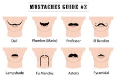 Moustaches guide with names: Dali, Plumber Mario, Professor, El Bandito, Lampshade, Fu Manchu, Asterix, Pyramidal. Set of mustaches on mans face.  on white Stock Photos