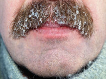 Moustaches with ice Royalty Free Stock Images