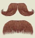 Moustaches pour l'homme illustration stock