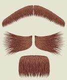 Moustaches pour l'homme. Ramassage de vecteur illustration libre de droits