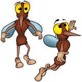 moustique Image stock